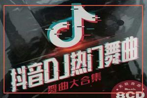 108首2020最新抖音dj打包下载