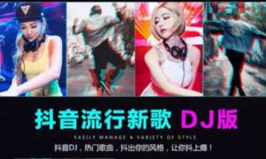 94首抖音最火中文dj打包下载