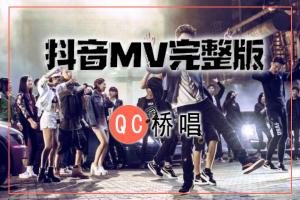 30个打包抖音歌曲MV下载